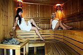 Centro wellness con sauna all
